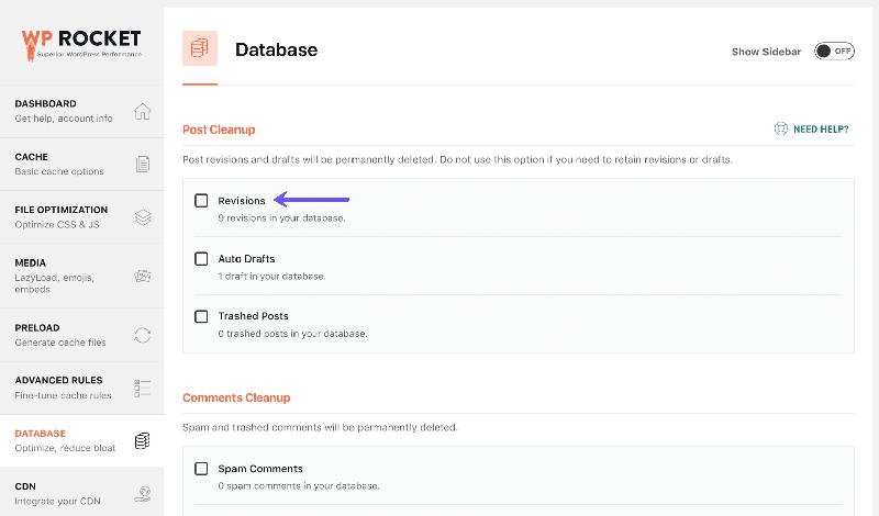 WP Rocket database optimization